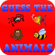 Guess the Animal Game for Kids by Chaulky Town Apps