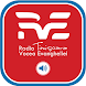 RVE Timisoara by adellphos
