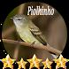 Canto de Piolhinho by jonn jeff