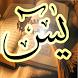 Surah Yaseen by Shaheryar Naeem