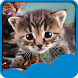 Cute Cats Live Wallpapers by Live Wallpapers Free