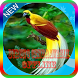 Masteran Burung Cendrawasih Offline by jogem apps