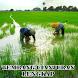 Lagu Sunda Cianjuran by bogordev