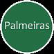Notícias do Palmeiras Verdão by AnineStudio