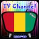 Info TV Channel Guinea HD