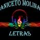 Aniceto Molina Letras by SizeMediaCo.