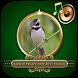 Canto de Pássaros Silvestres e Exóticos by XL App