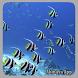 Ornamental Fish Culture by abinaya