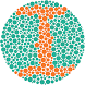 Color Blindness Test by Rafael Bassan