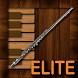 Professional Flute Elite by Alyaka