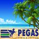 Поиск туров Пегас. by Sitcom