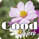 Good Week by V.S.J studio
