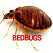 Bedbugs Disease by bedieman