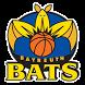 Bayreuth Bats