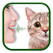 Cat to Human Voice Translator