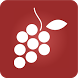 Wine Manager (Managing cellar) by Maxime Vaysse