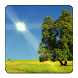 True Weather LWP by Vivoti Ltd.