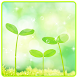Spring Nature Green Leaf Theme by Cool Wallpaper
