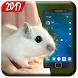 Mouse On Screen Scary Joke Prank- Mouse Run 2017 by Graphix PhotoEditor Studio