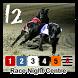 Greyhound Race Night - 12 by PJB Design
