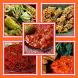 Aneka Resep Sambal by Midafa Apps