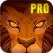 Lion Run + by NETIGEN Games