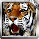 Tiger Live Wallpaper by CineGifWallpapers
