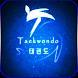 Taekwondo by Berhane