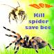 Man Kill Spider Free Game by Daniel lepark