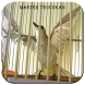 Master Kicau Burung Trucukan by jendraldev