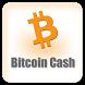 Bitcoin Cash : BCH Price
