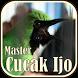 Suara Burung Cucak Ijo Master by JTZstudio