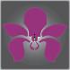 Wild Orchid Salon by Wild Orchid Salon LLC