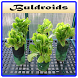 Best Hydroponic Systems by Buldroids