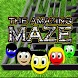 The Amazing Maze by Rafael Bassan