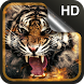 Tiger Live Wallpaper HD by Dream World HD Live Wallpapers