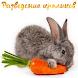 Разведение кроликов by fishermanyou