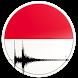 Indonesia Earthquake Alert by doug.nasc