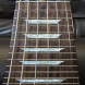 Electric Guitar Fretboard by Michael Rylee