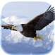 Eagle Live Wallpaper by LWP World