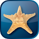 Five Star Hilton Head by Glad to Have You, Inc.