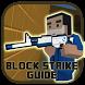 ProGuide for Block Strike