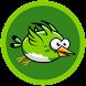 Birdie Birdie by MoCo