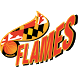Maryland Flames by Exposure Events, LLC