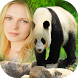Giant Panda Photo Frame by INfinite Technology