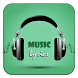 Miranda Lambert Vice by Music Lyrics Studio