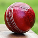 Cricket videos by Cortex Technology