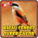 Kicau Cendet Super Gacor by Kicau Burung Dev