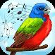 Bird Sounds Ringtones - Reminder App With Alarm