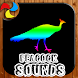 Peacock Sounds Ringtones by Manuel Ringtones and Sounds